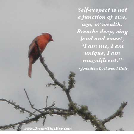Quotes About Women Self Respect http://www.inspirational-wisdom-quotes.com/quotes/respect/