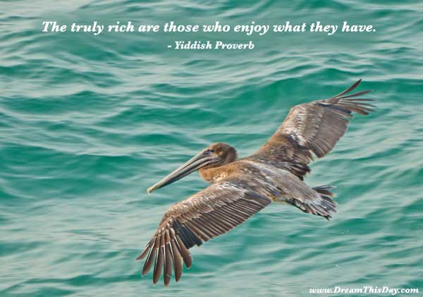 Enjoy What They Have Those Who Are the Rich Tuly